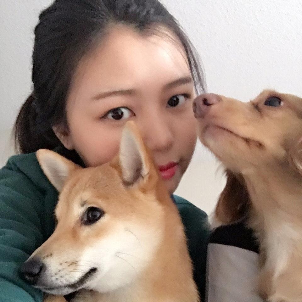 Yao's dog boarding