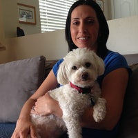 Toni's dog boarding