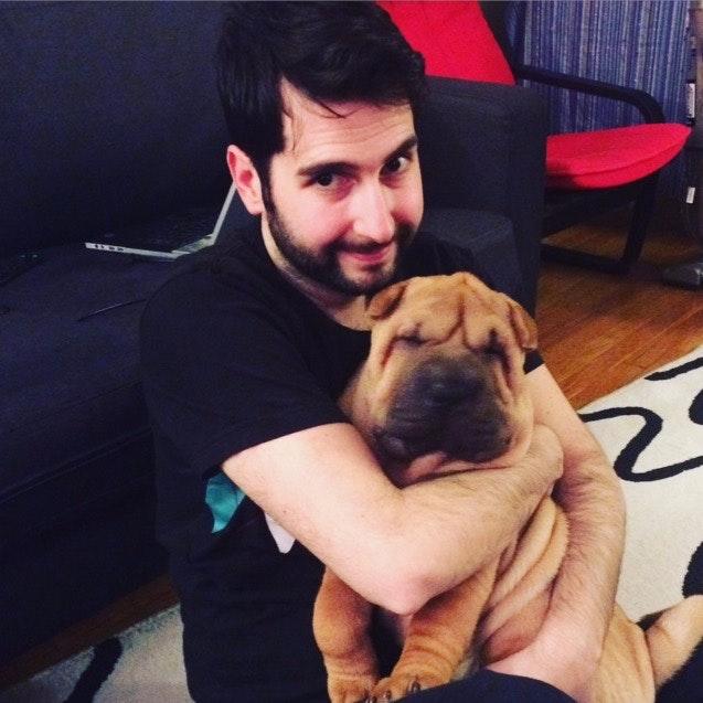 dog walker Temucin