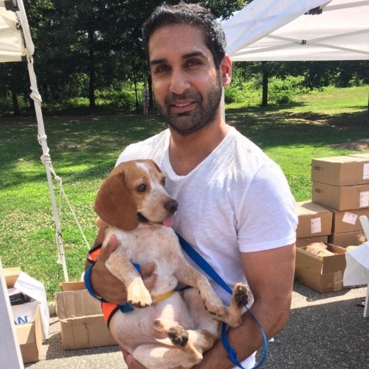 Khal's dog day care