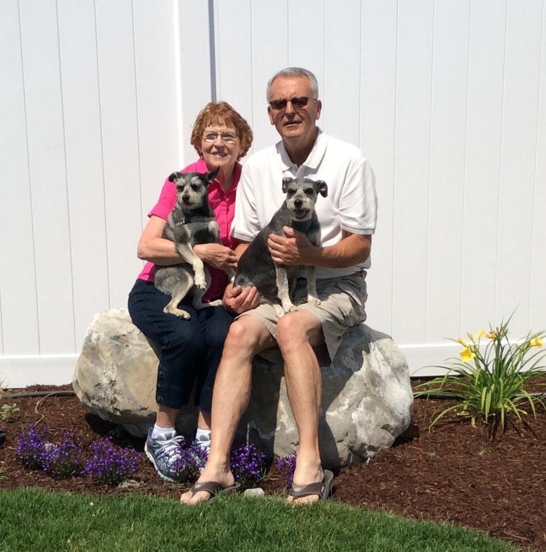 Gale & Lynda's dog boarding