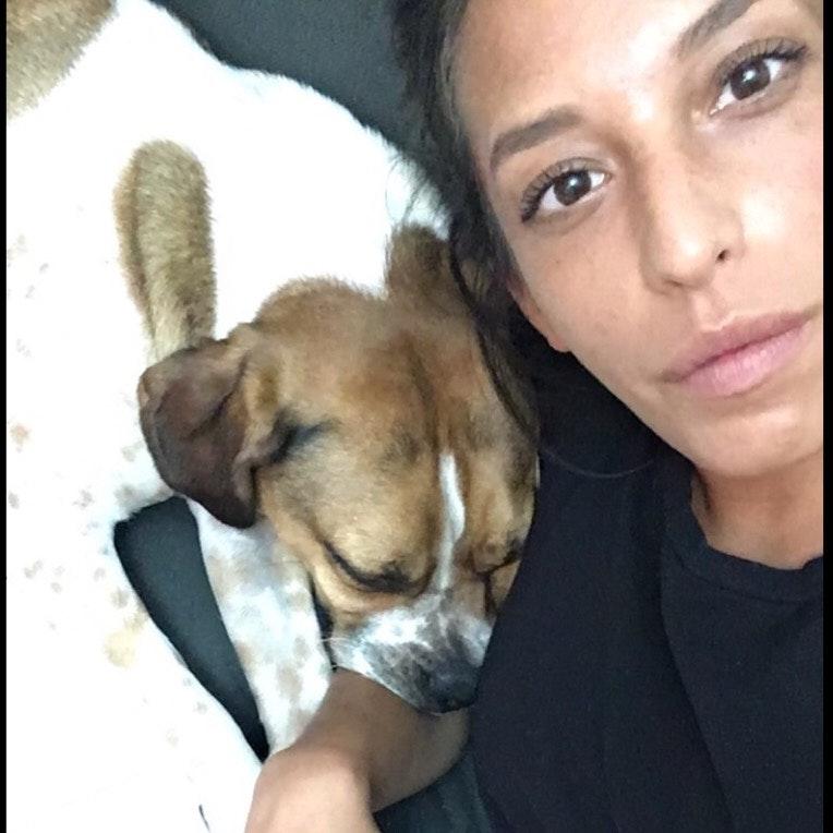 Alana's dog boarding