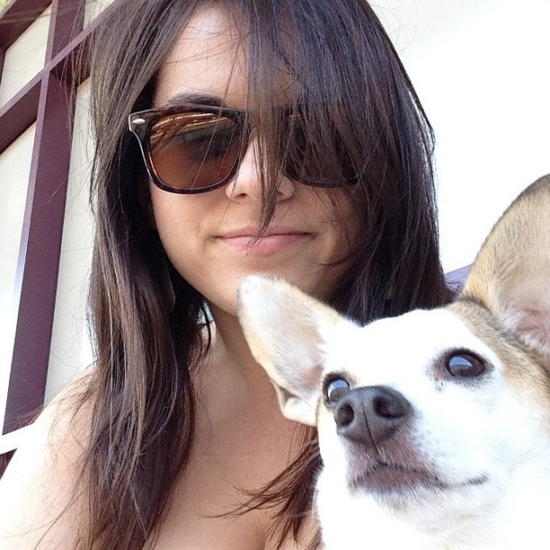Katherine's dog day care
