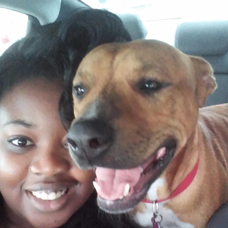 Latisha's dog day care