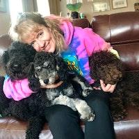 Ginger & Kari's dog boarding