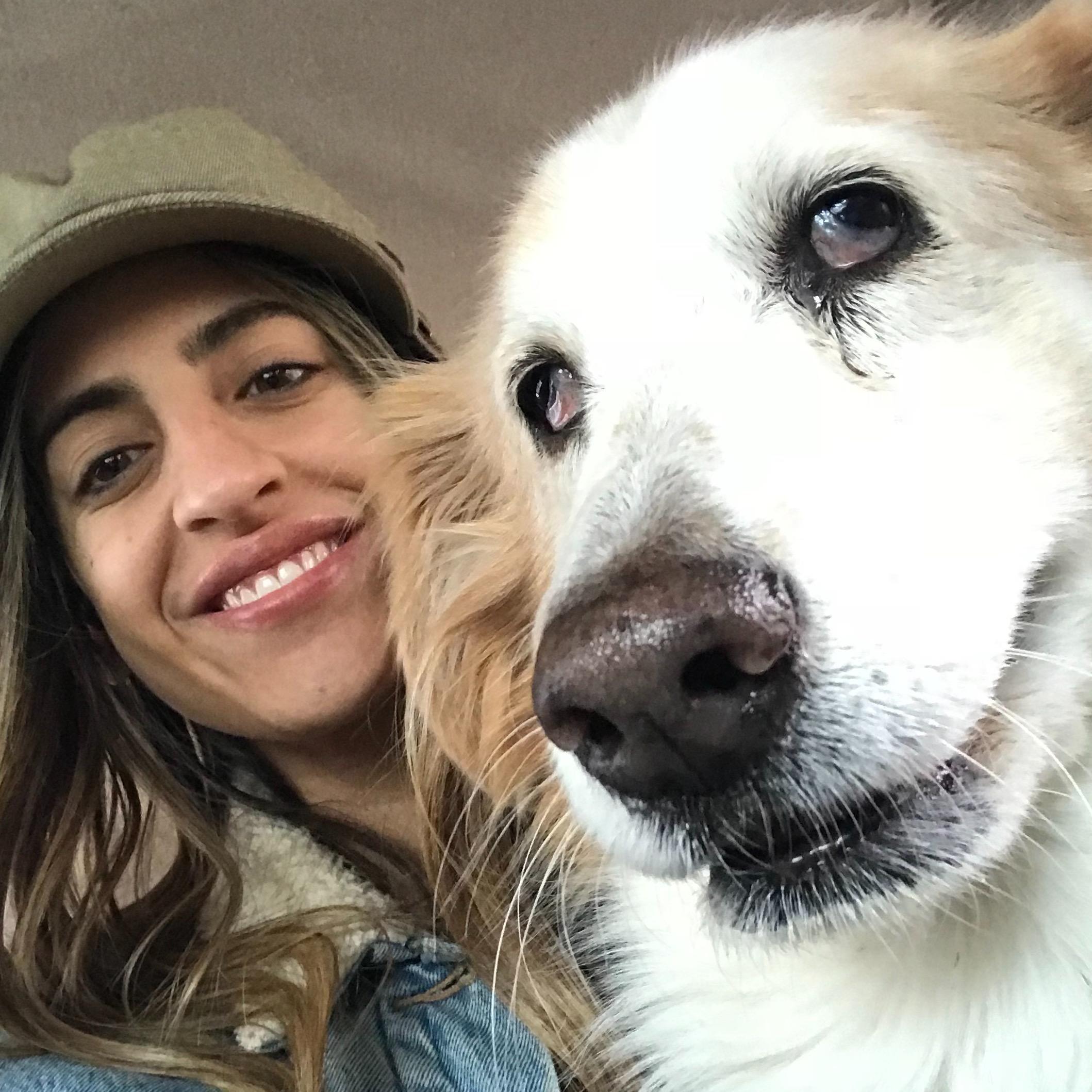 Farah's dog day care