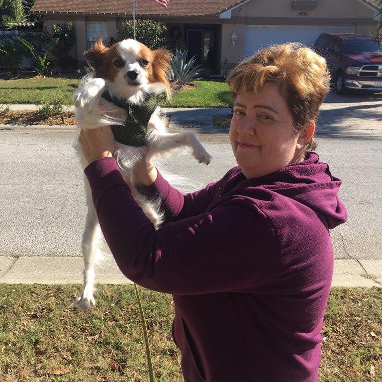 Zinaida's dog day care