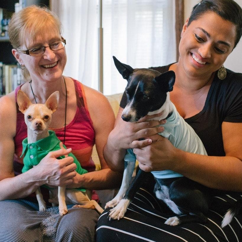 Caroline & Marilyn's dog day care