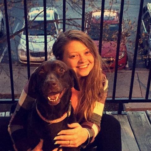 Kasey's dog day care