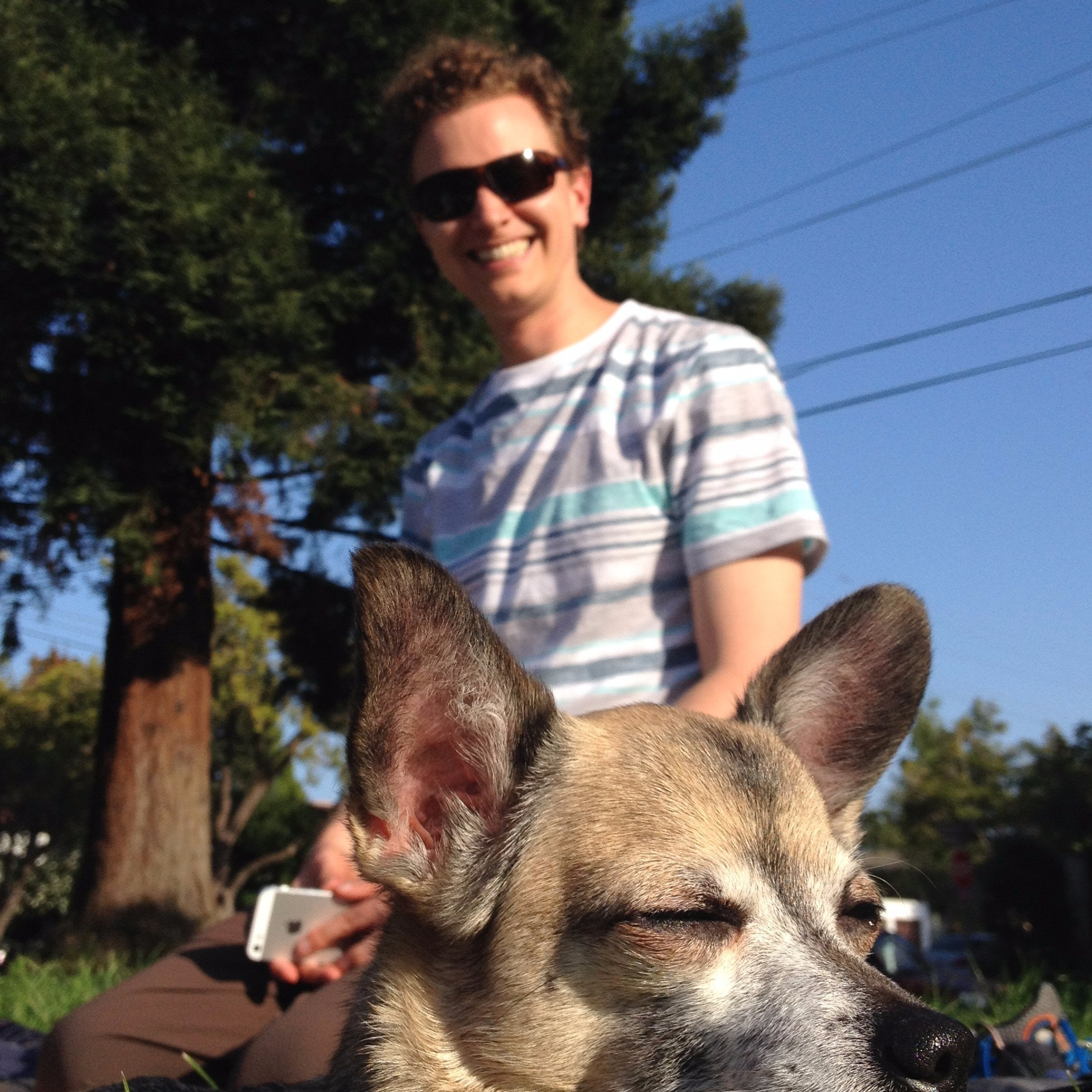 Kurt's dog day care