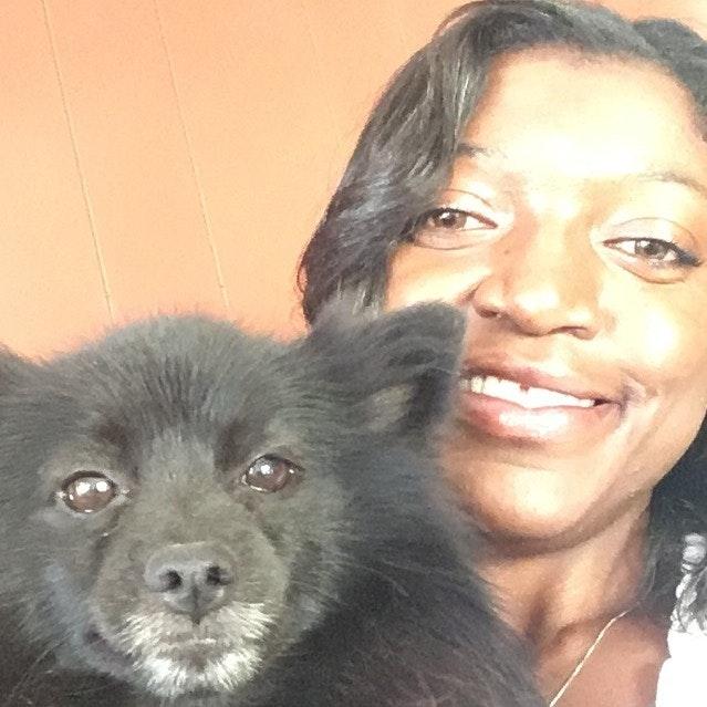Bessie's dog day care