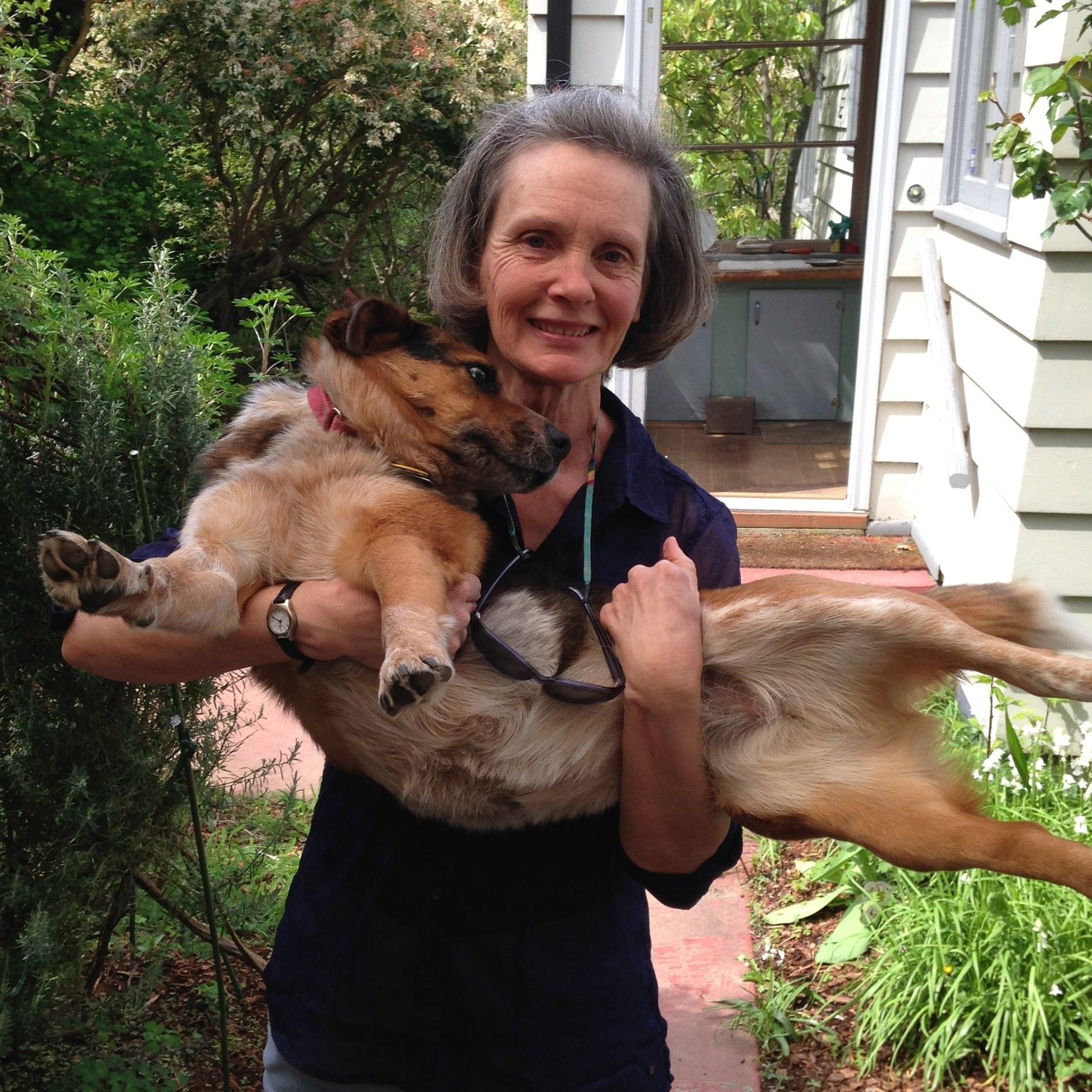 Carole's dog boarding