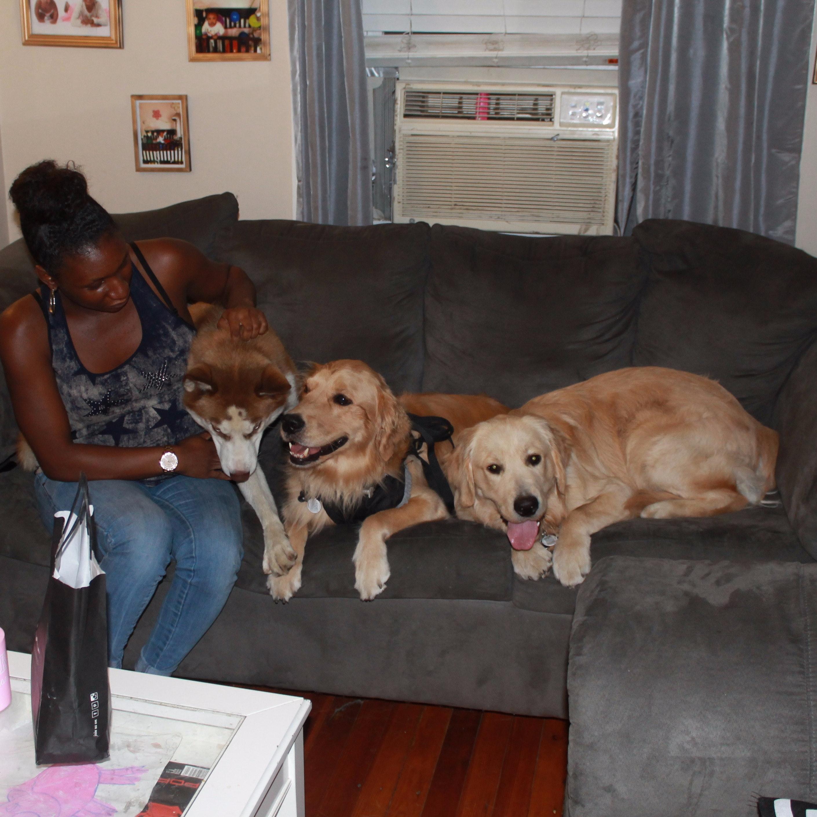 La-Nina's dog day care