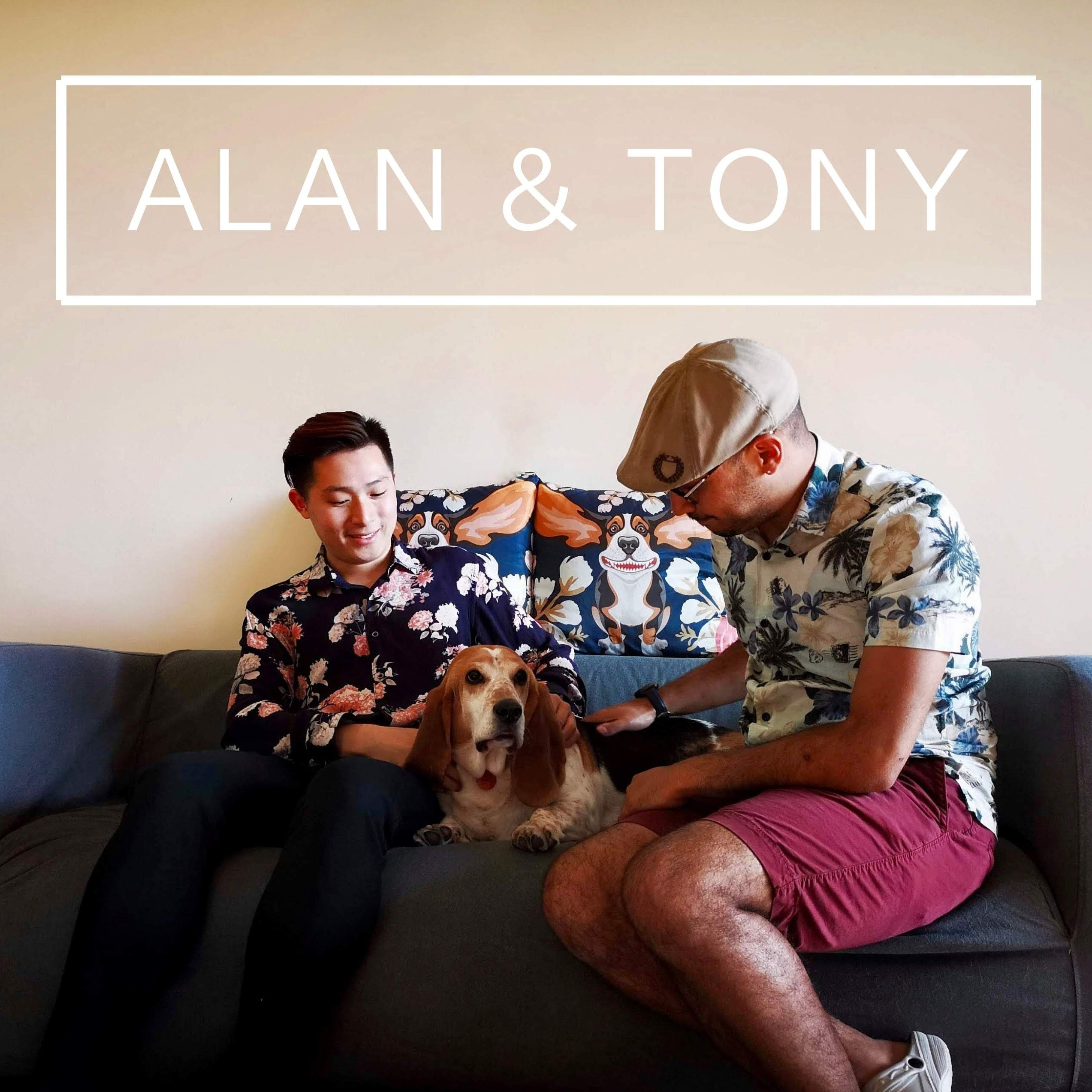 Alan's dog boarding