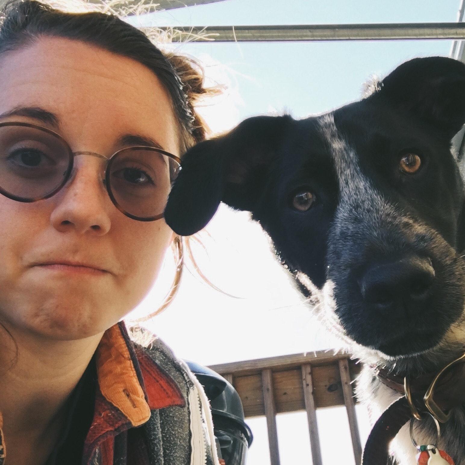 Margaret's dog boarding