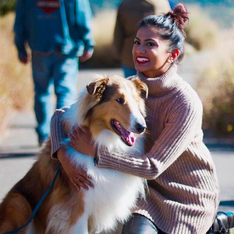Annu's dog day care