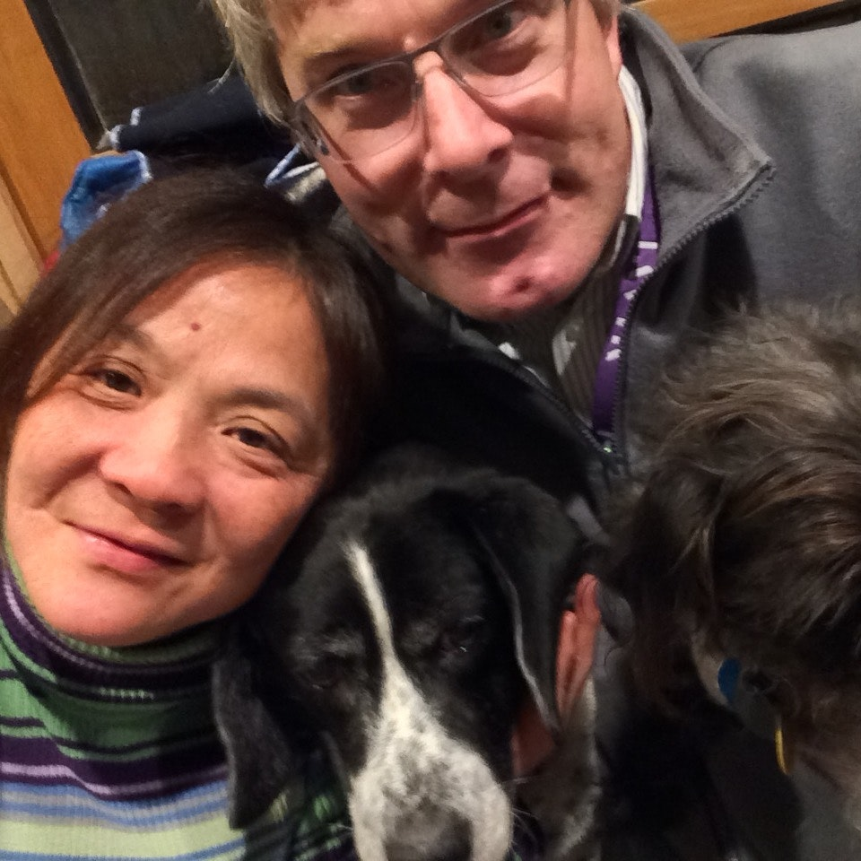 Joan's dog day care