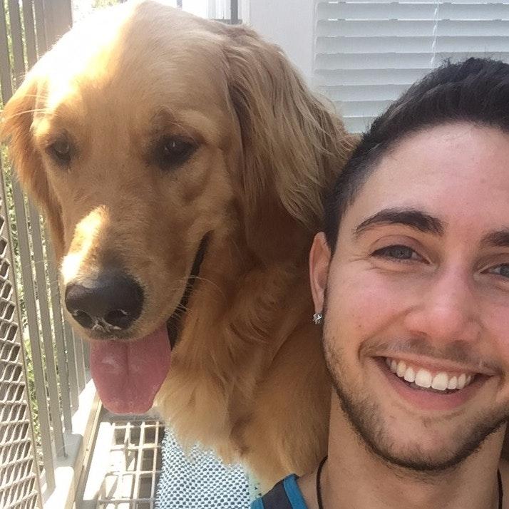 Aiden's dog boarding