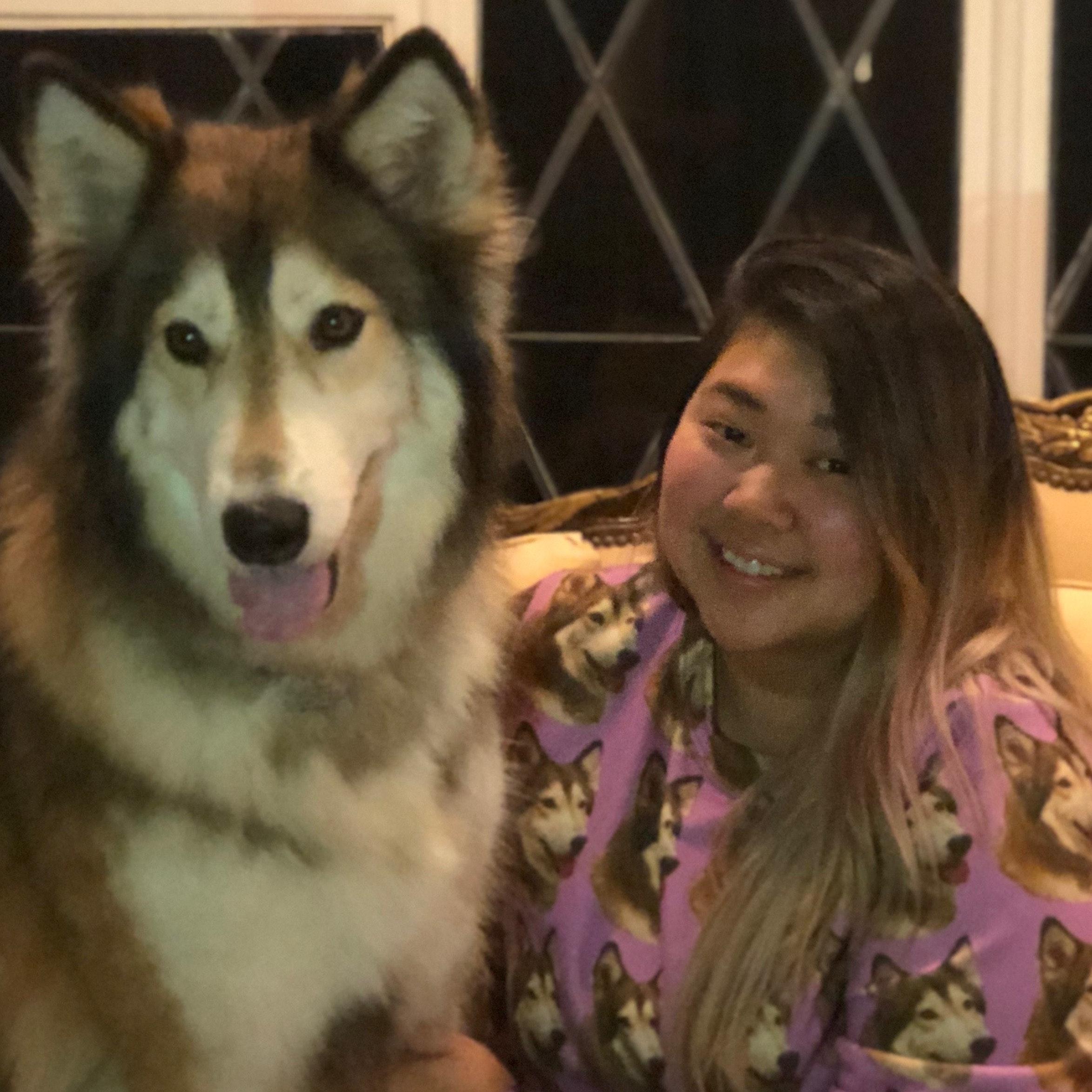 Pauline's dog day care