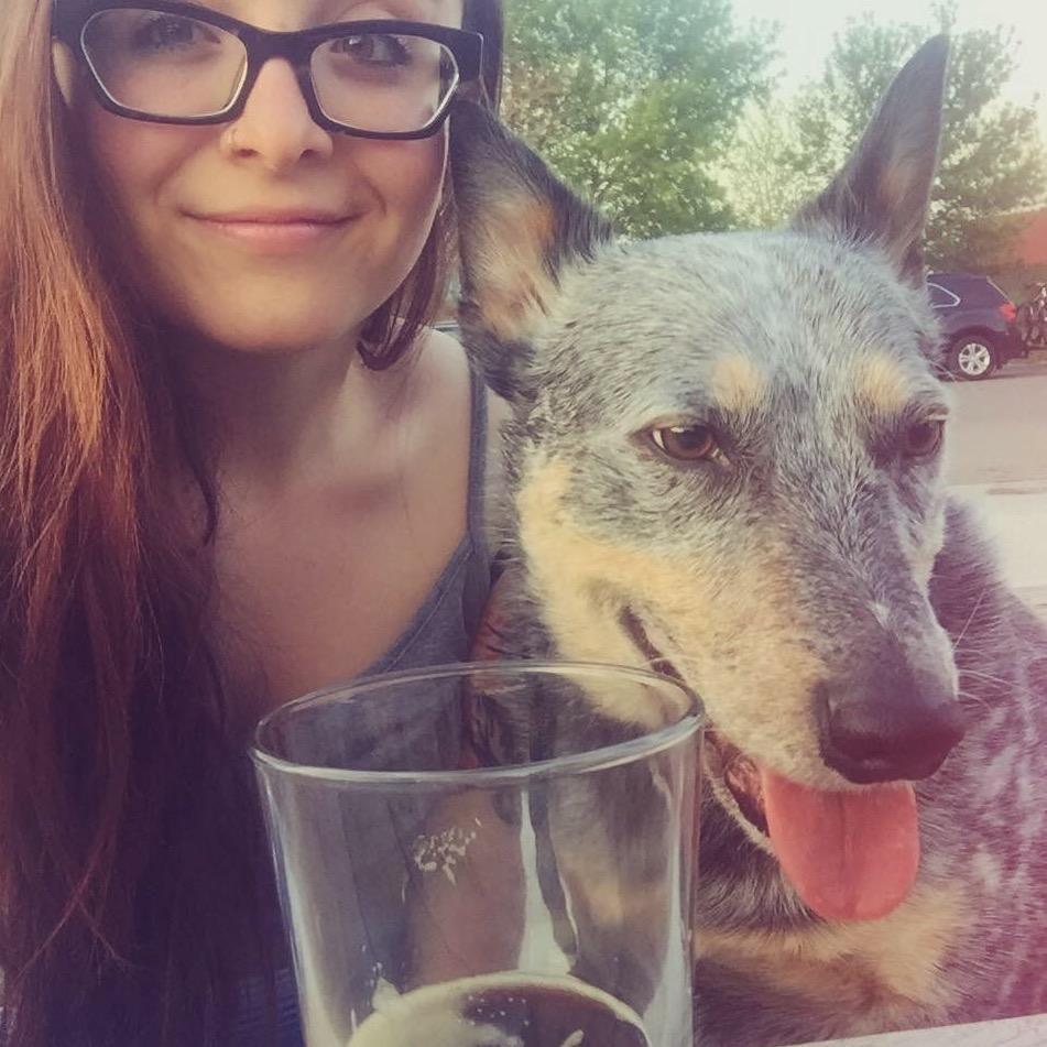 Lydia's dog boarding