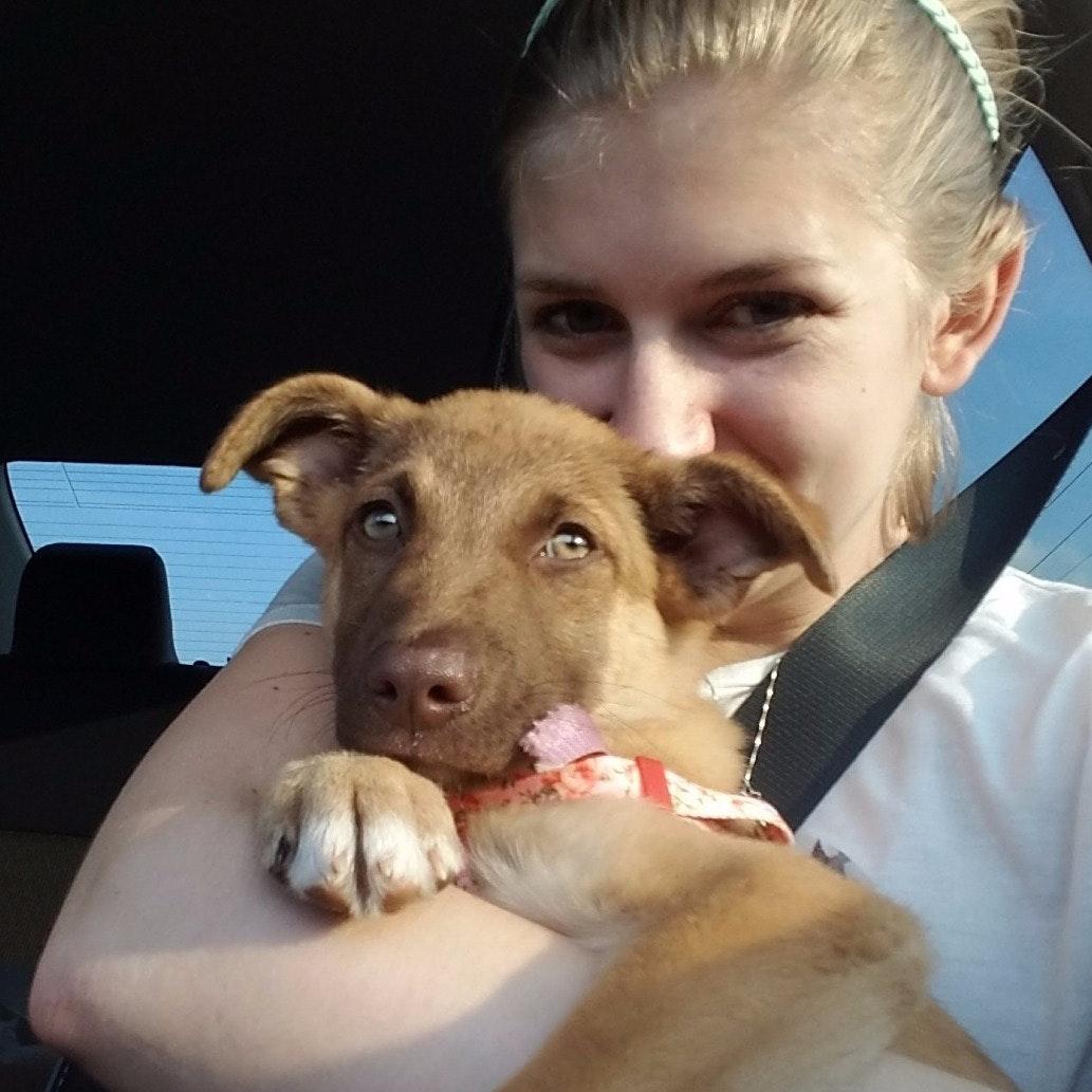 dog walker Andria
