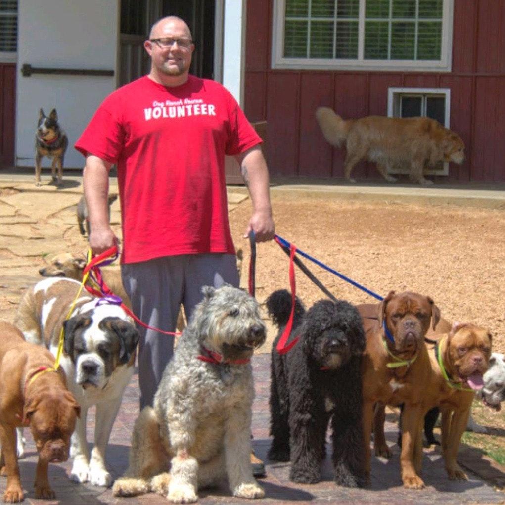 dog walker Preston