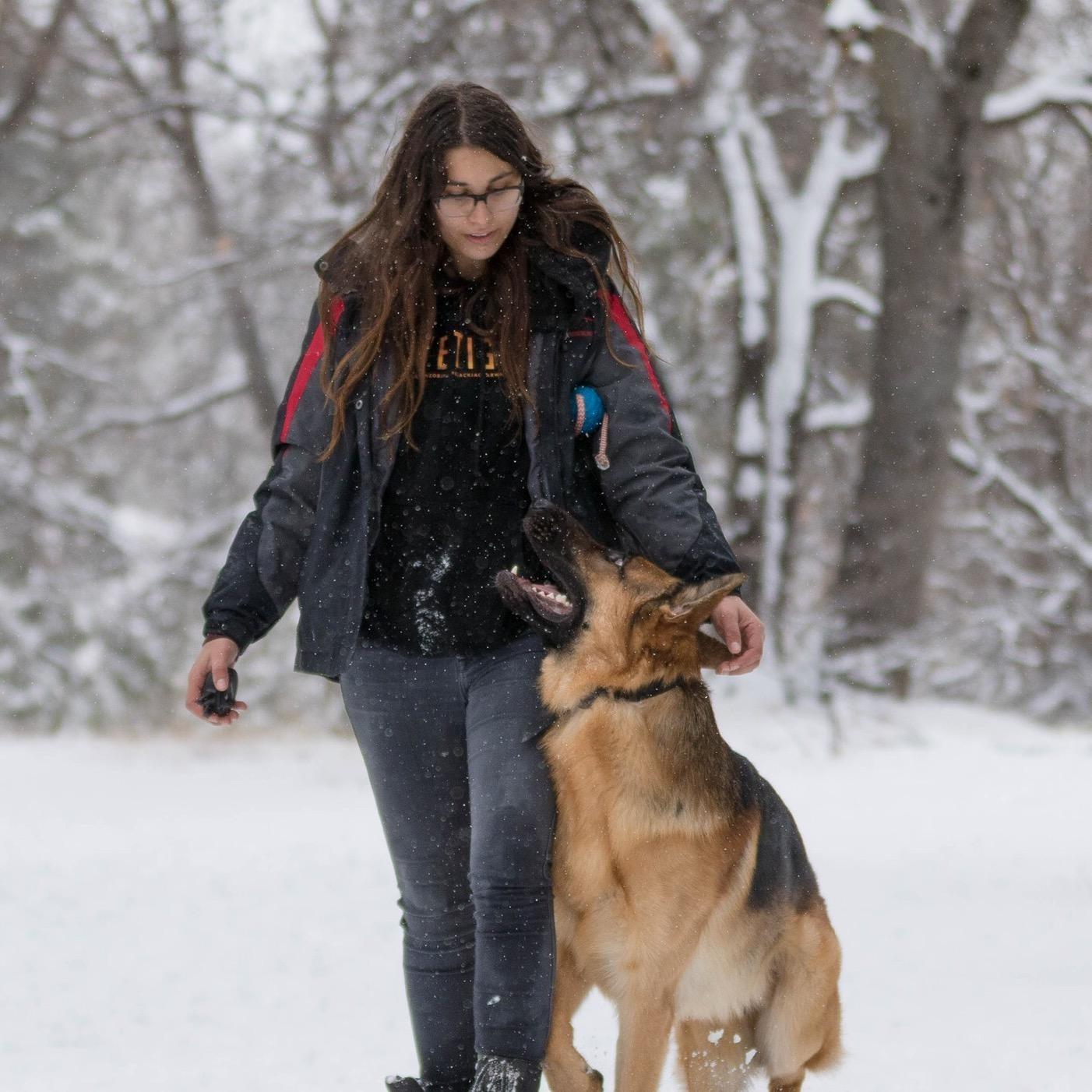 Maiah's dog boarding