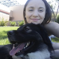 Naomi's dog day care