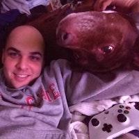 Alexander's dog day care