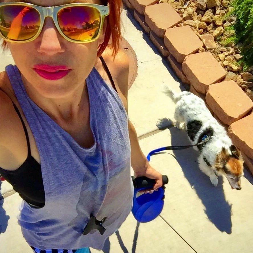 Mandy's dog boarding