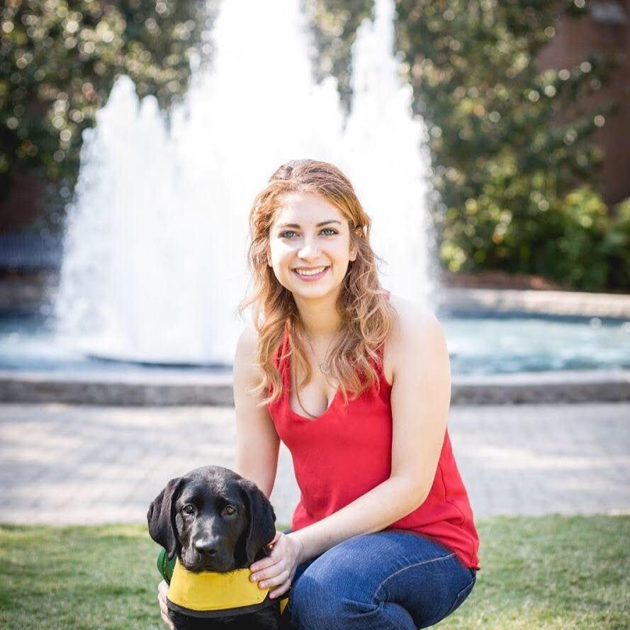 Shai's dog day care