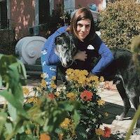 Francesca's dog boarding