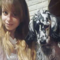Martina's dog boarding