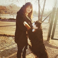Franziska's dog boarding
